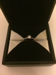 【エクセルコダイヤモンド(EXELCO DIAMOND)の口コミ】 ダイヤモンドの質はDカラー、IF以上と決めて、4店舗まわりました。上記…