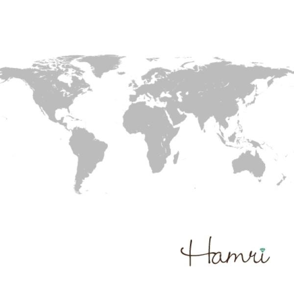 【Hamri(ハムリ)】世界地図のマリッジリング