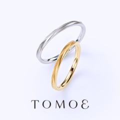 【巴(TOMOE)】TAKANOHA - 鷹羽 -