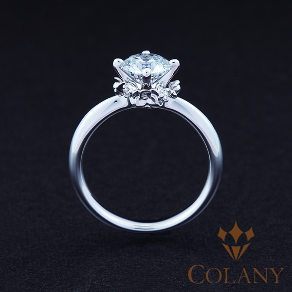 【COLANY(コラニー)】IN OUR WISH 〜Opus3