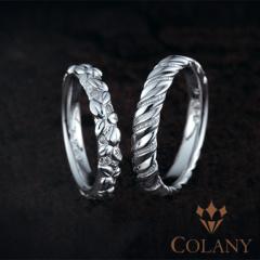 【COLANY(コラニー)】ブルーベリー