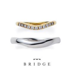 【BRIDGE(ブリッジ)】Morning Dew あおぎ~敬い合い慕い合い~
