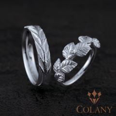 【着け心地のいい指輪専門店 harmony by COLANY】シラカバ