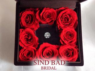 SIND BAD(シンドバット)