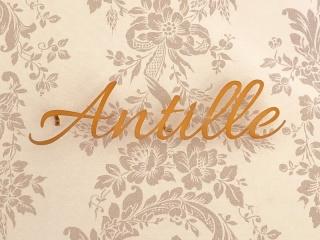 Antille(アンティール)