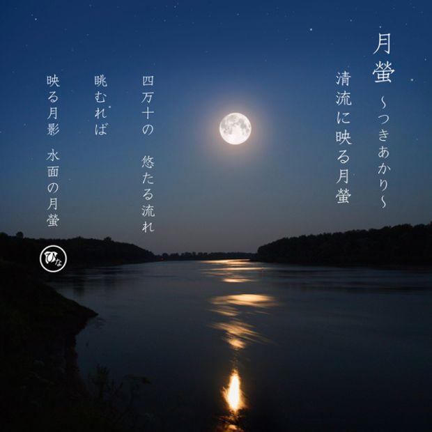 【ひな】月蛍~つきあかり~