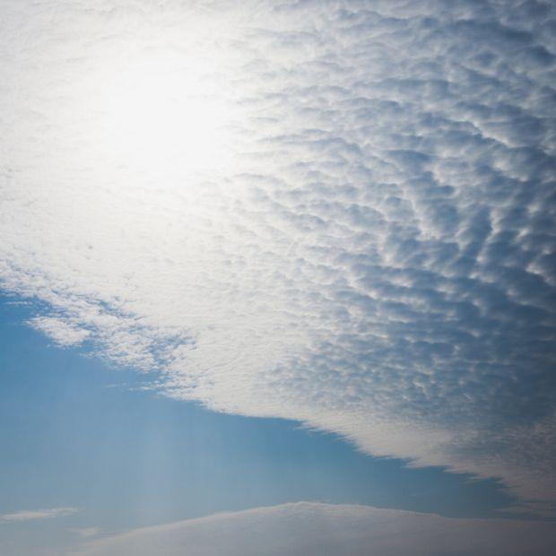 【出雲結(いずもゆい)】- 雲 結 - く も