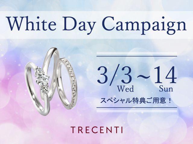 TRECENTI(トレセンテ) 横浜元町店について