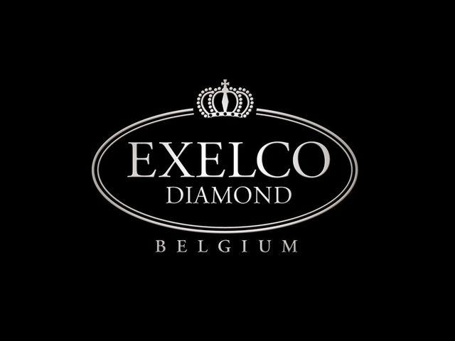 エクセルコ ダイヤモンド ホテルテラスザガーデン水戸店について