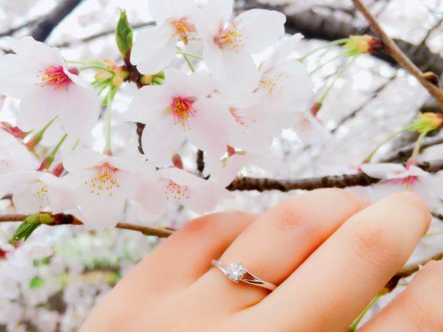 初桜という指輪です。