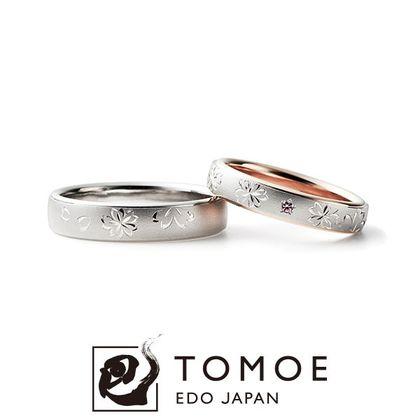 【TOMOE(トモエ)】SAKURAEMAKI - 桜絵巻 -