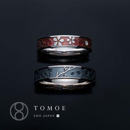 【TOMOE(トモエ)】SAKURATSUKIYO - 桜月夜 -