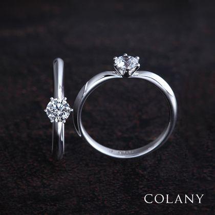 【COLANY(コラニー)】ヒマワリ
