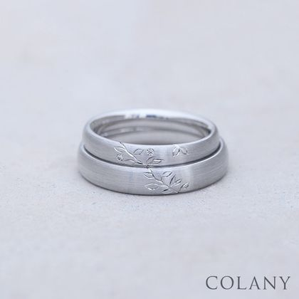 【COLANY(コラニー)】GUMI  グミ