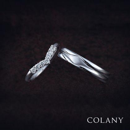 【COLANY(コラニー)】ヒイラギ