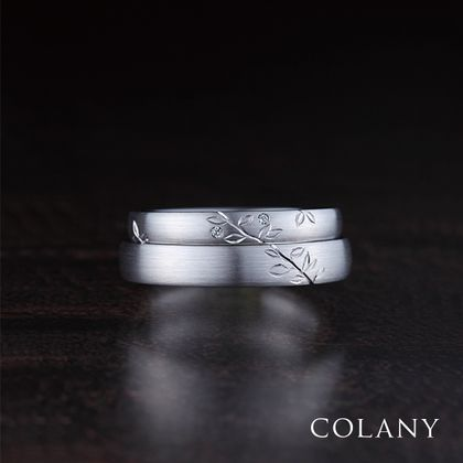 【COLANY(コラニー)】グミ