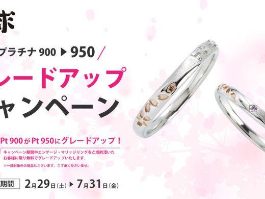 琉球春のキャンペーン