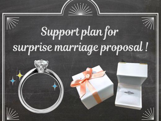 【サプライズプロポーズを応援します!】本物のダイヤモンド&プラチナ製の婚約指輪でプロポーズ!成功後に彼女好みのリングデザインに変更できます♪最短5日~受取OK!