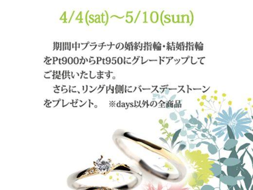 【RosettE】Spring Bridal Fair 開催