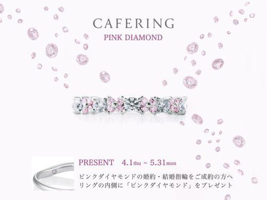 【沼津店・御殿場本店】 『 CAFE RING 』 5月31日(月)まで 指輪の内側にピンクダイヤモンドプレゼント